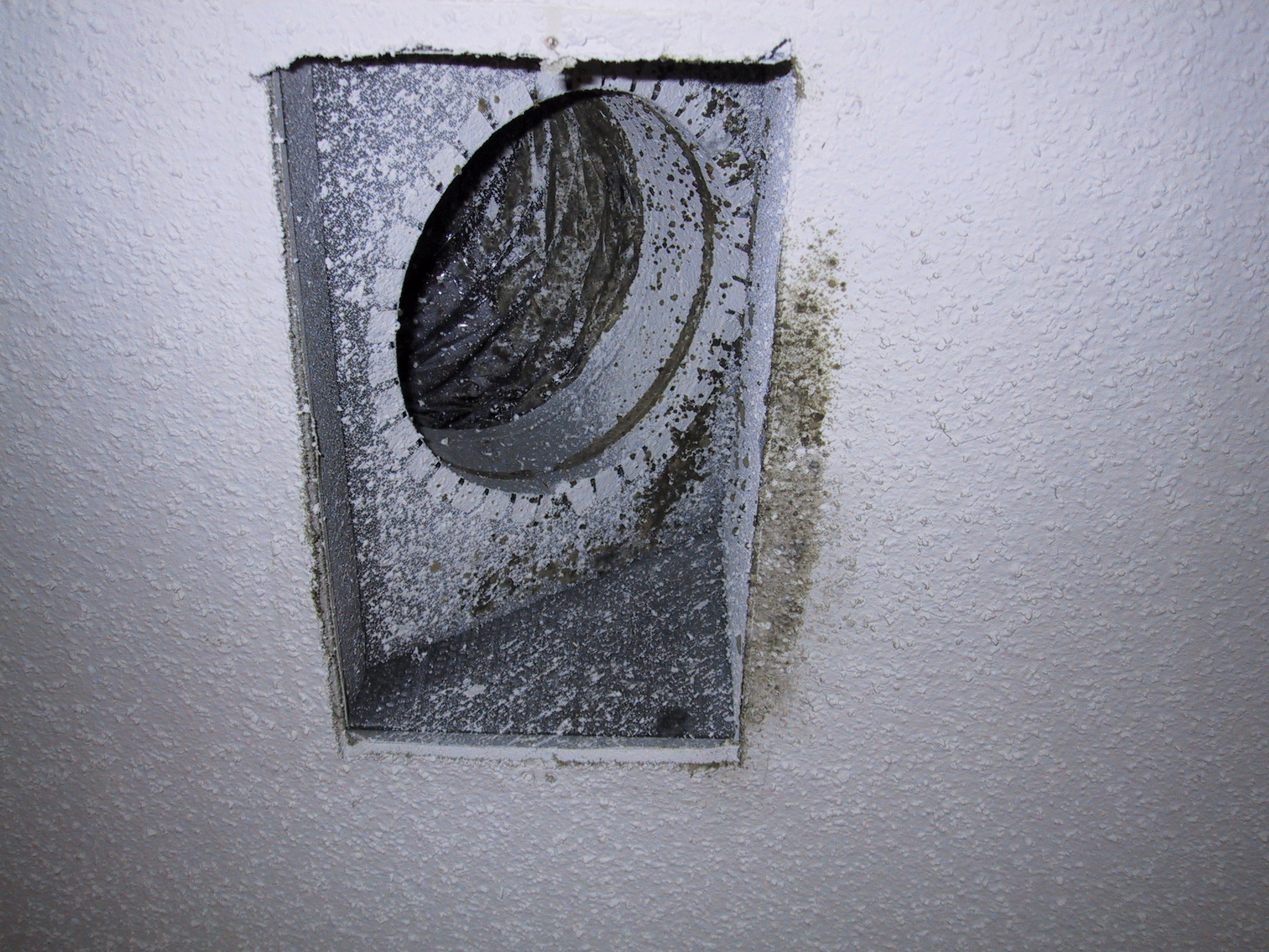 #565675 Penicillium Mold Related Keywords & Suggestions  Best 5563 Mold In Hvac Ducts photos with 2048x1536 px on helpvideos.info - Air Conditioners, Air Coolers and more